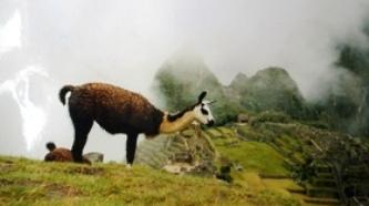 Peru-Gruppenreise
