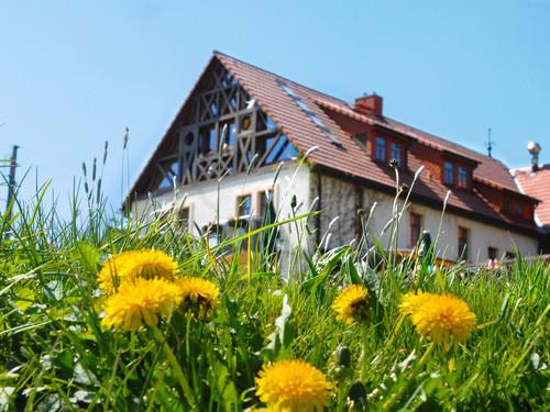 Yogareise-Sachsen