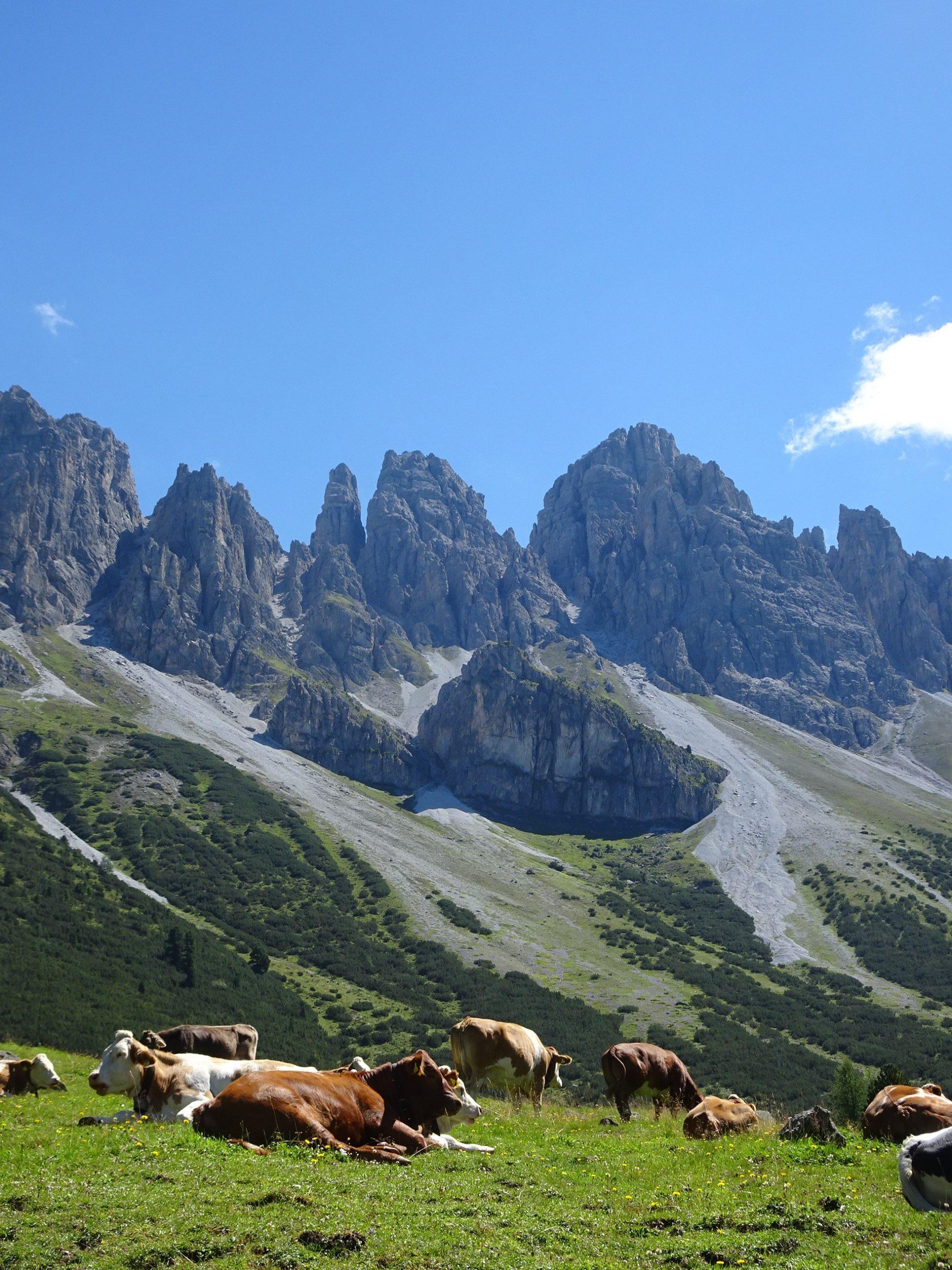 Spiritwanderung Alpen